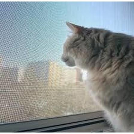 Москітна Сітка На Вікна (Алюмінієва)
